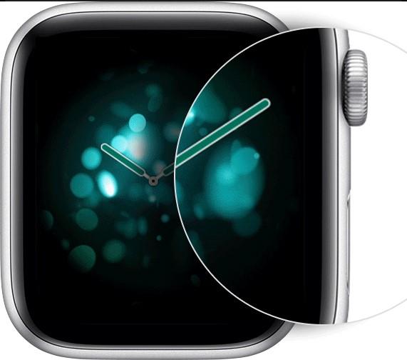 Take Screenshot on Apple Watch